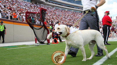 "The Corps of Cadets dog, Growley II (also known as ""Tank""), walks off the field after the national anthem holding his Cav Man toy. (Mark Umansky/TheKeyPlay.com)"