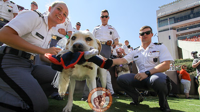 Growley II, also known as Tank, plays with his Cavman chew toy on the sidelines with his cadet handlers in the first quarter. (Mark Umansky/TheKeyPlay.com)