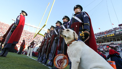 Growley II stands with his handler before the Corps of Cadets march on the field. (Mark Umansky/TheKeyPlay.com)