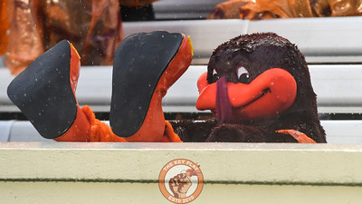 The HokieBird kicks back and undoubtedly enjoys what he's seeing on the field. (Michael Shroyer/ TheKeyPlay.com)