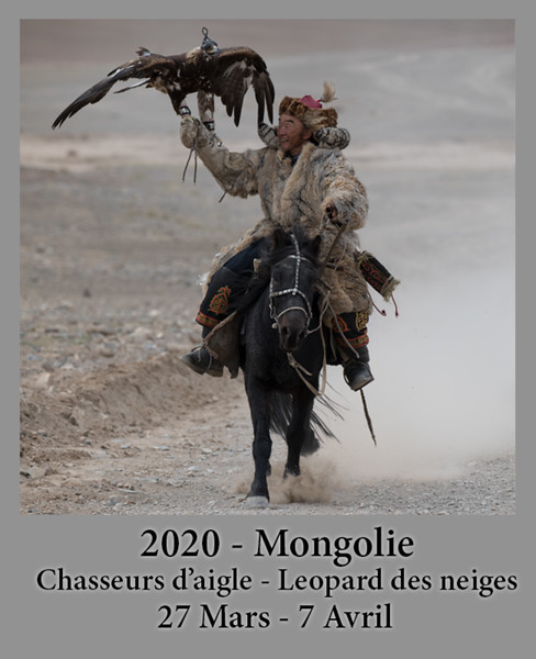 2020-03-27-Mongolie