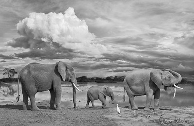 Africa-Kenya--004