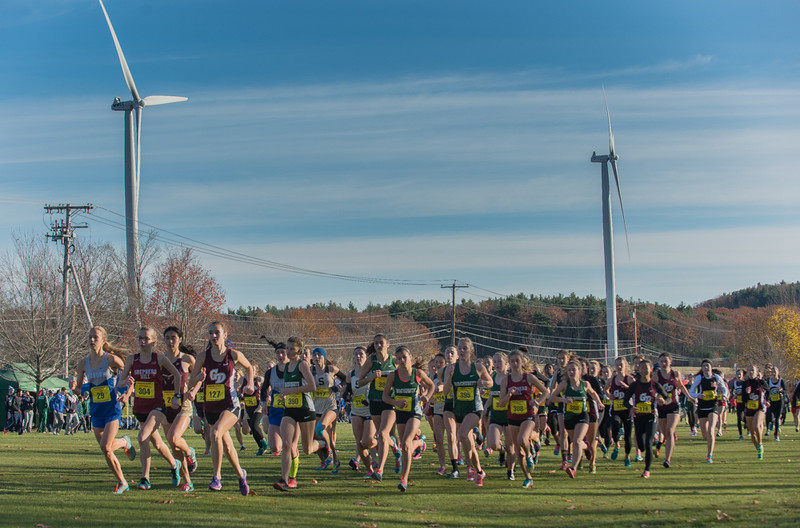 The Div I Girls are led off the start by Groton Dunstable's Emily Willson (127) during the MIAA Cross Country Districts held at Gardner Municipal Golf Course. SENTINTEL & ENTERPRISE / JIm Marabello