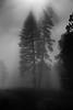 Full moon & mist in Yosemite Valley