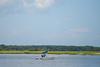 D3_Cumberland_Island_Cruise-88