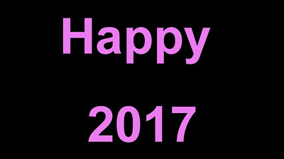 Have a Happy New Year in 2017!