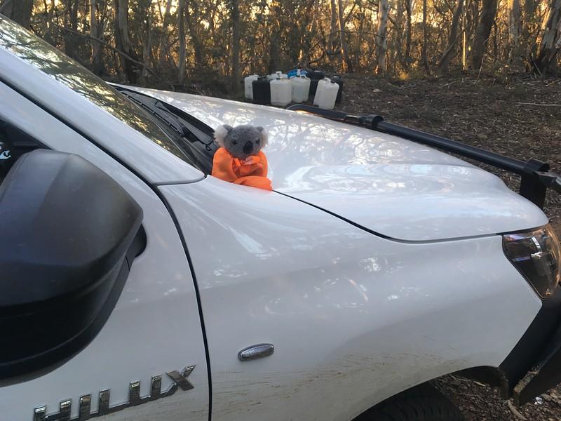 Barkley on safety patrol