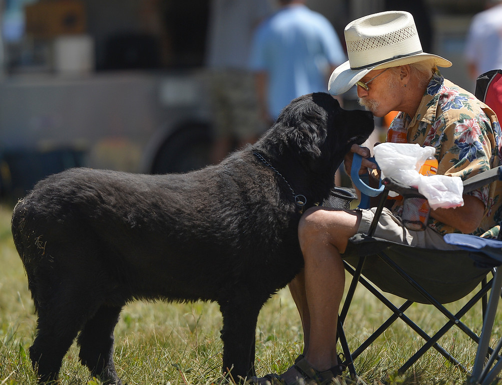 Justin Sheely | The Sheridan Press<br /> Bill Mathews of Lovell receives a kiss from his dog Darwin during the Summer Festival last July at Antelope Butte ski area.