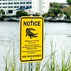 alligator warning sign notice near water