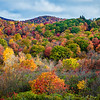 Graveyard Fields on the Blue Ridge Parkway in autumn