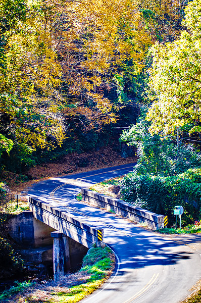 road with bridge leading into autumn forest