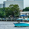 A view of Wilmington North Carolina from across the Cape Fear River