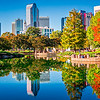 charlotte city skyline from marshall park autumn season with blue sky