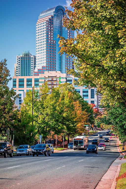 charlotte city skyline from marshall park autumn season with blue sky