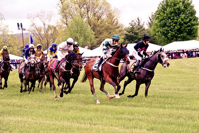The Race; VA Gold Cup 2016