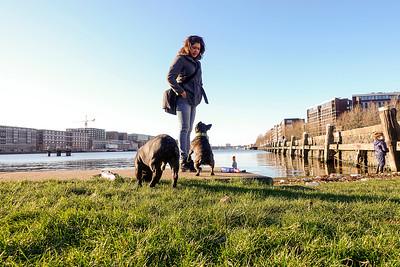 Amsterdam, Oostelijk Havengebied, 17 januari 2016, foto: Katrien Mulder