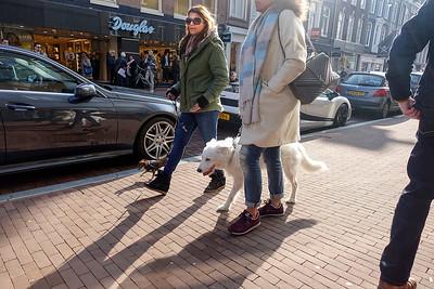 Amsterdam, 12 maart 2016, foto: Katrien Mulder