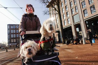 Amsterdam, Javaplein, 12 maart 2016, foto: Katrien Mulder
