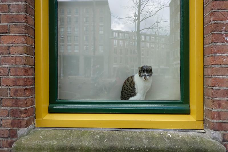 Amsterdam, Javaplein, 27 maart 2016, foto: Katrien Mulder