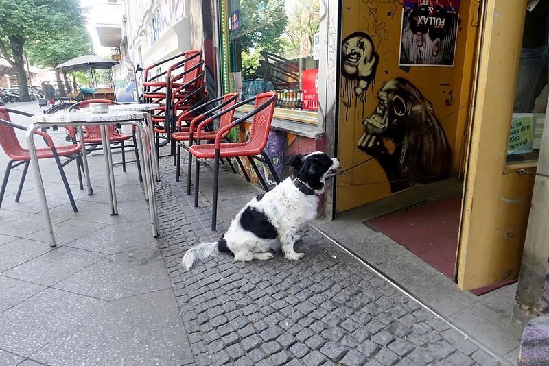 Berlijn, 13 mei 2916, foto: Katrien Mulder