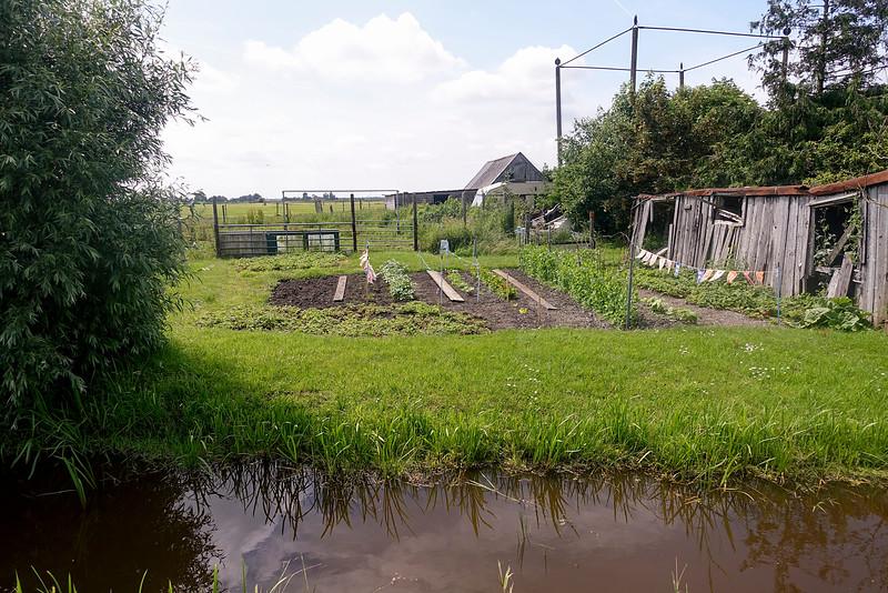 Nederland', Waterland, 19 juni 2016, foto: Katrien mulder