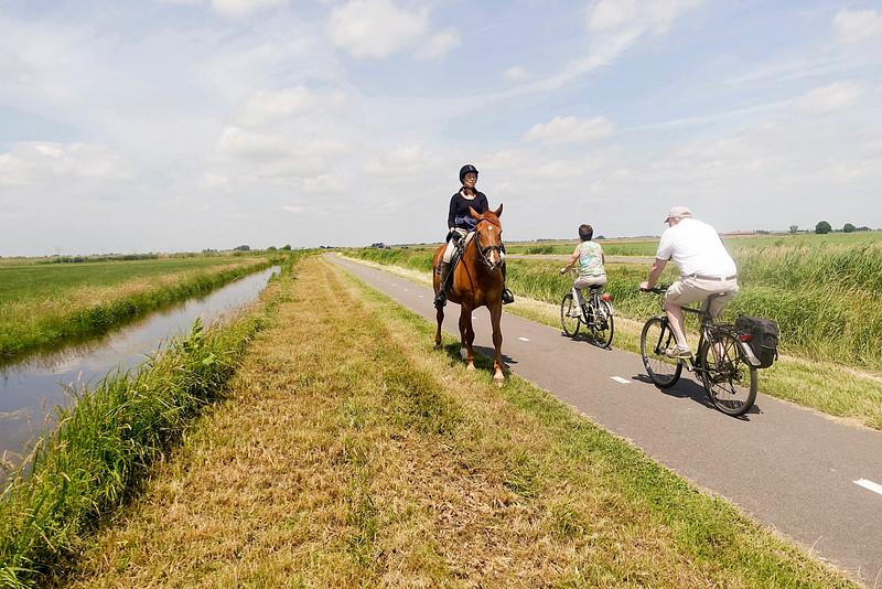 Nederland, Waterland, 19 juni 2016, foto: Katrien Mulder