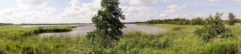 Nederland; Naarden, Naardermeer, 17 juli 2016, foto: Katrien Mulder