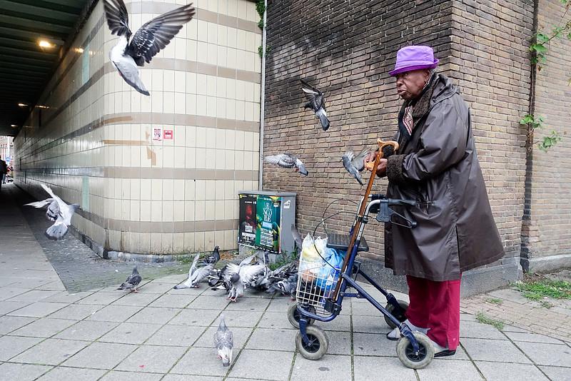Nederland, Amsterdam, een duivenvriendin, pigeons girlfriend, 12 augustus 2016, foto: Katrien Mulder