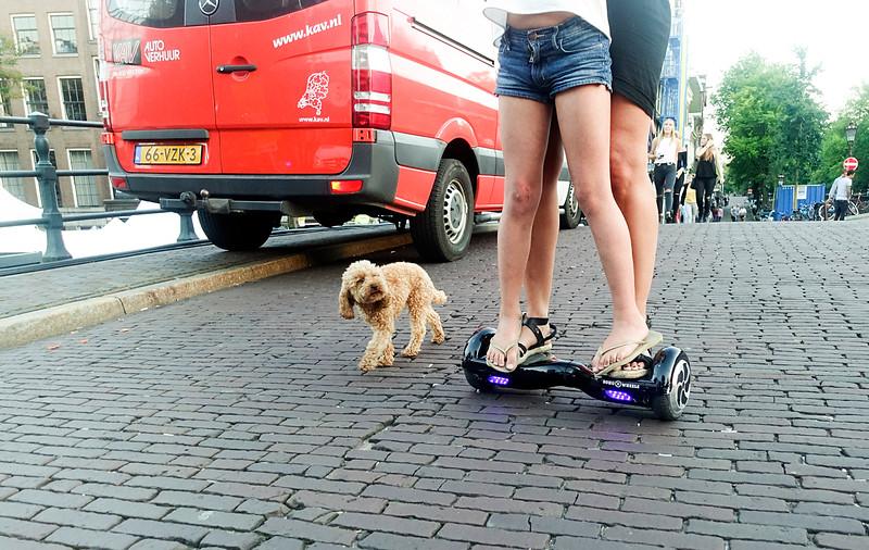 Nederland, Amsterdam, Keizersgracht, moeder en dochter laten hun hondje uit per Smart City Wheels, 9 september 2016, foto: Katrien mulder