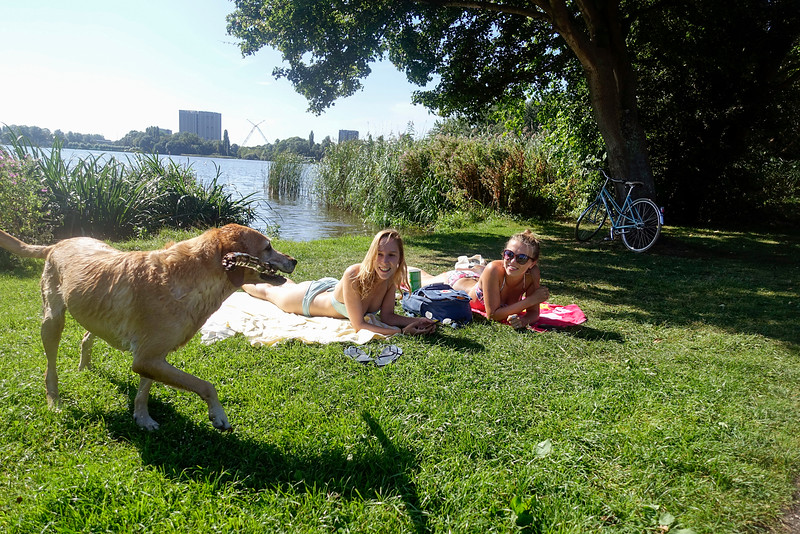 Nederland, Amsterdam, flevopark, 12 september 2016, foto: Katrien Mulder