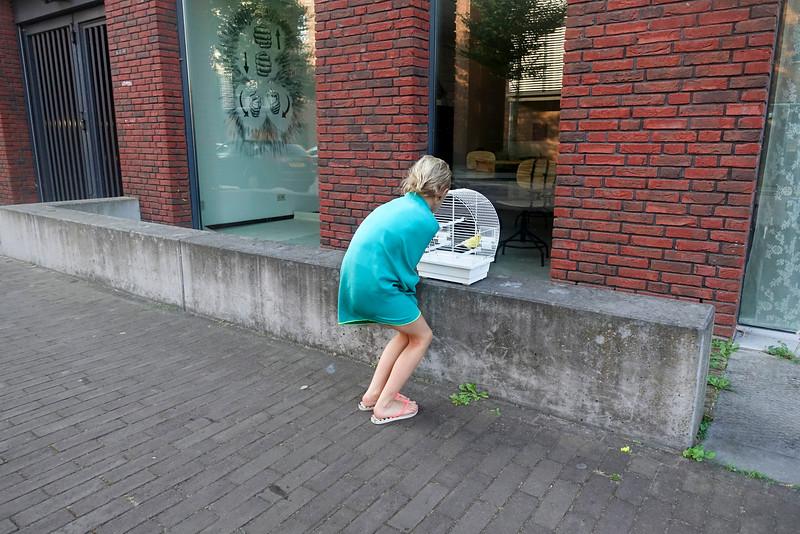 Nederland, Amsterdam, IJburg, extreem mooi weer; 13 september 2016, foto: Katrien mulder