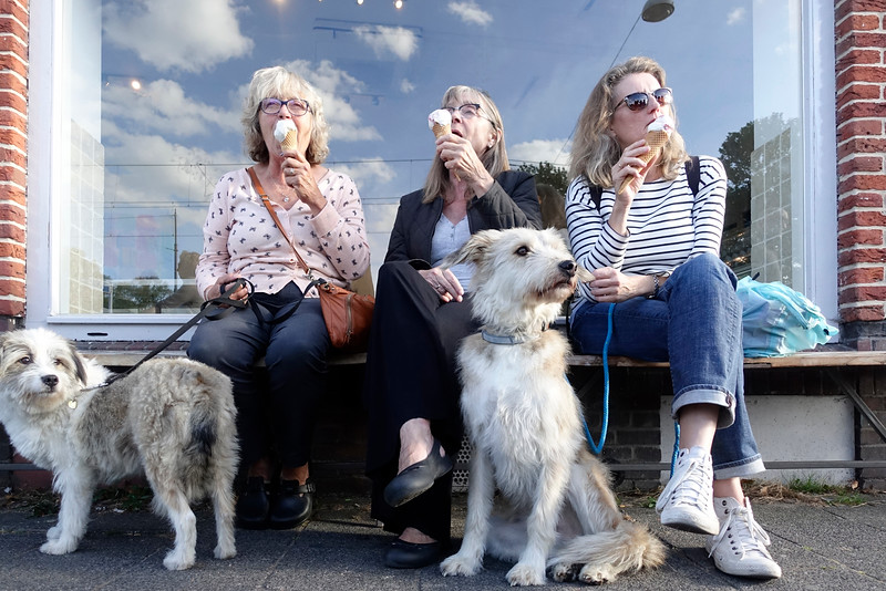 Nederland, Amsterdam, Amsterdam Oost, 23 september 2016, ijs etende vrouwen met    honden  uit Roemenie , ice cream eating women with dogs from Romania, foto: Katrien Mulder