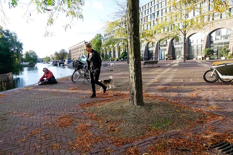 Nederland, Amsterdam, Amsterdam Oost, 3 oktober 2016, foto: Katrien mulder