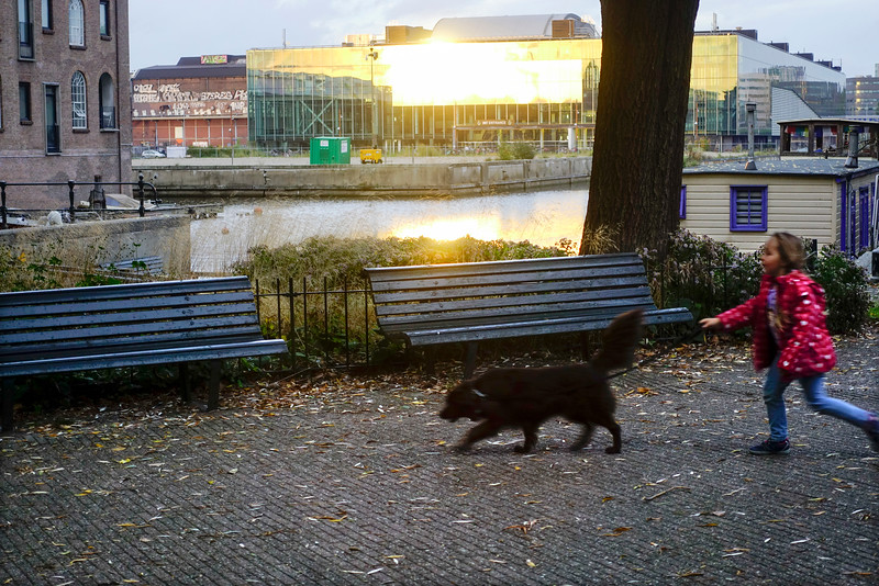 Nederland, Amsterdam, 27 oktober 2016, foto: Katrien Mulder
