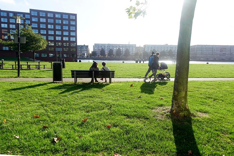 Nederland, Amsterdam, Amsterdam Oost, Javaeiland, 29 oktober 2016, zomer in de herfst,  foto: Katrien Mulder