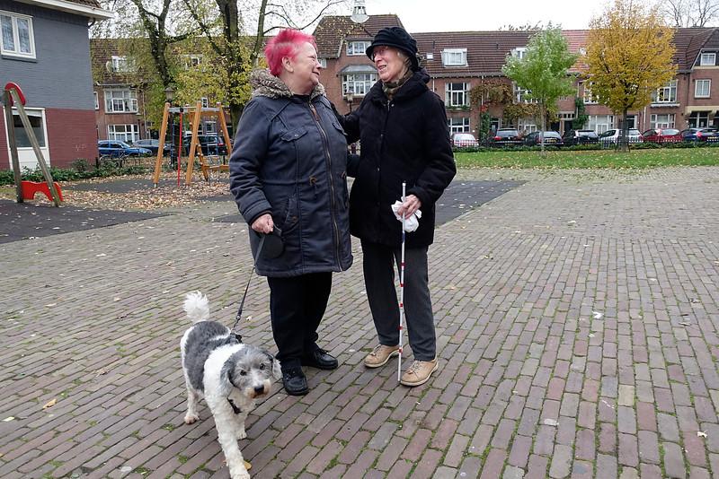 Nederland, Amsterdam, Amsterdam Noord, Vogelbuurt, Zwanenplein, het mooiste plein van Noord, 7 november 2016, foto: Katrien Mulder