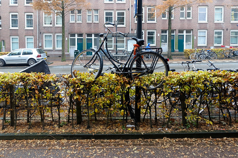 Nederland, Amsterdam, Amsterdam Oost, 14 november 2016, foto: Katrien Mulder