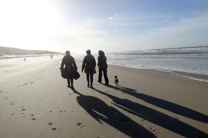 Nederland, Callantsoog, 22 november 2016, foto: Katrien Mulder