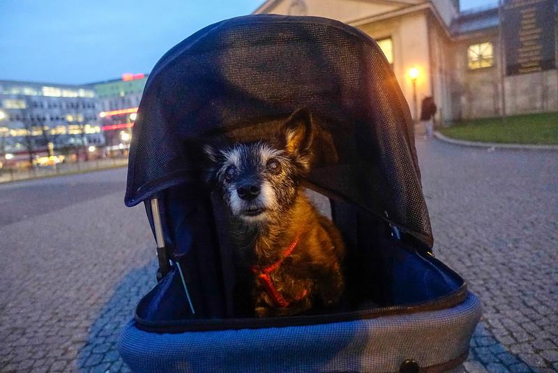 Duitsland, Berlijn, Anita,18 jaar, 7 december 2016, foto: Katrien Mulder