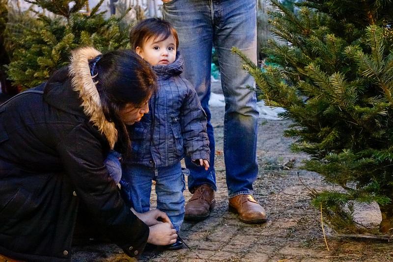 Nederland, Amsterdam, Amsterdam Oost,  een moeder strikt de veters van haar kind, 18 december 2016, foto: Katrien Mulder