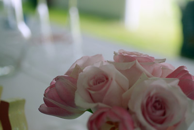 Boston Wedding Photographers Backyard Wedding TAB photographic