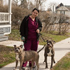 JOED VIERA/STAFF PHOTOGRAPHER- Lockport, NY-Carissa Stahli walks her dogs Hercules and Iilyn down N Transit Street.