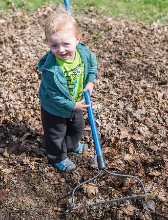 JOED VIERA/STAFF PHOTOGRAPHER- Lockport, NY-Noah Greinern (1) rakes a yard on Prospect Street.