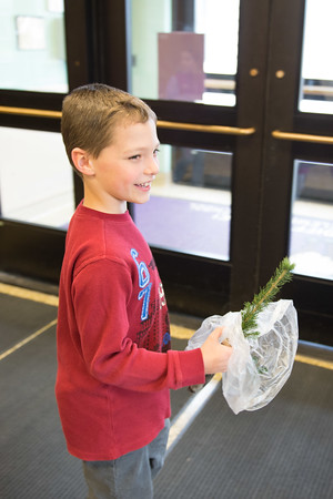 JOED VIERA/STAFF Gasport, NY-Roy-Hart Elementary student Jase Waters 8 walks with a blue spruce seedling he was given to plant in celebration of Arbor Day.