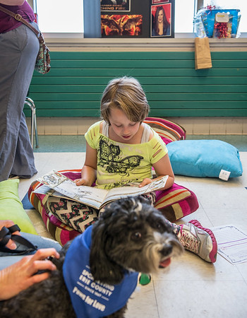 "JOED VIERA/STAFF PHOTOGRAPH-Emily Maerten 10 reads ""The Mitten"" to Bruno, a Tibetan Terrier rescue in the SPCA's Paws for Love  program.during North Park Reading Night."