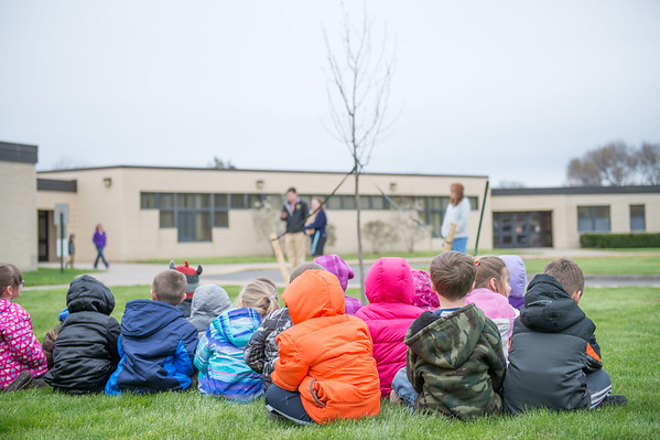 JOED VIERA/STAFF Gasport, NY-Roy-Hart Elementary students watch a tulip tree that was planted in front of the school in celebration of Arbor Day.