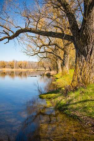JOED VIERA/STAFF PHOTOGRAPHER-Lockport, NY-The lake reflects trees like a mirror at Bond Lake Park.