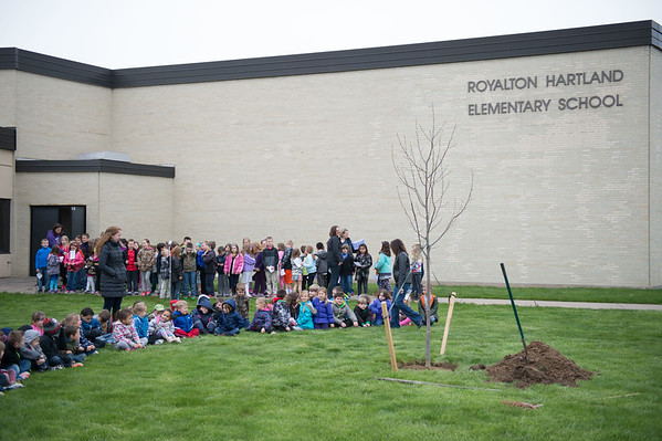 JOED VIERA/STAFF Gasport, NY-Roy-Hart Elementary students sit by a tulip tree that was planted in front of the school in celebration of Arbor Day.
