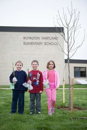 JOED VIERA/STAFF Gasport, NY-Roy-Hart Elementary students Dakota Smith 8, Jase Waters 8 and Sarah Stantzyk 7 hold up blue spruce seedlings they were given to plant in celebration of Arbor Day.