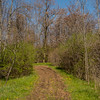 JOED VIERA/STAFF PHOTOGRAPHER-Lockport, NY-A trail welcomes hikers at Bond Lake Park.